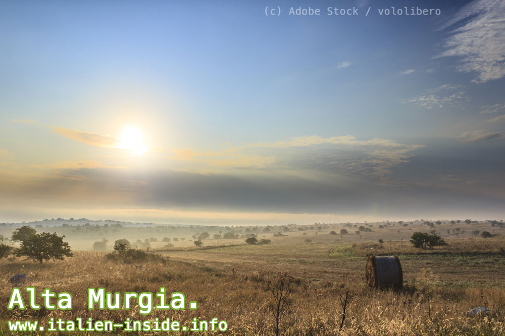 Landschaft-Alta-Murgia