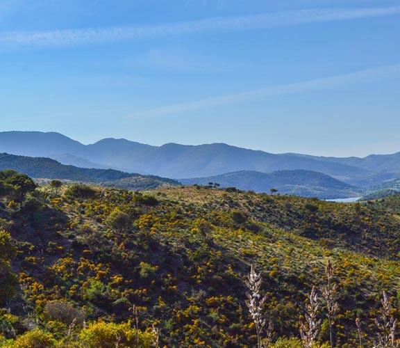 Gebirge-Sardinien