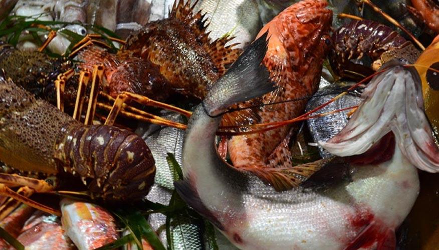 Fisch-Markt-Sardinien