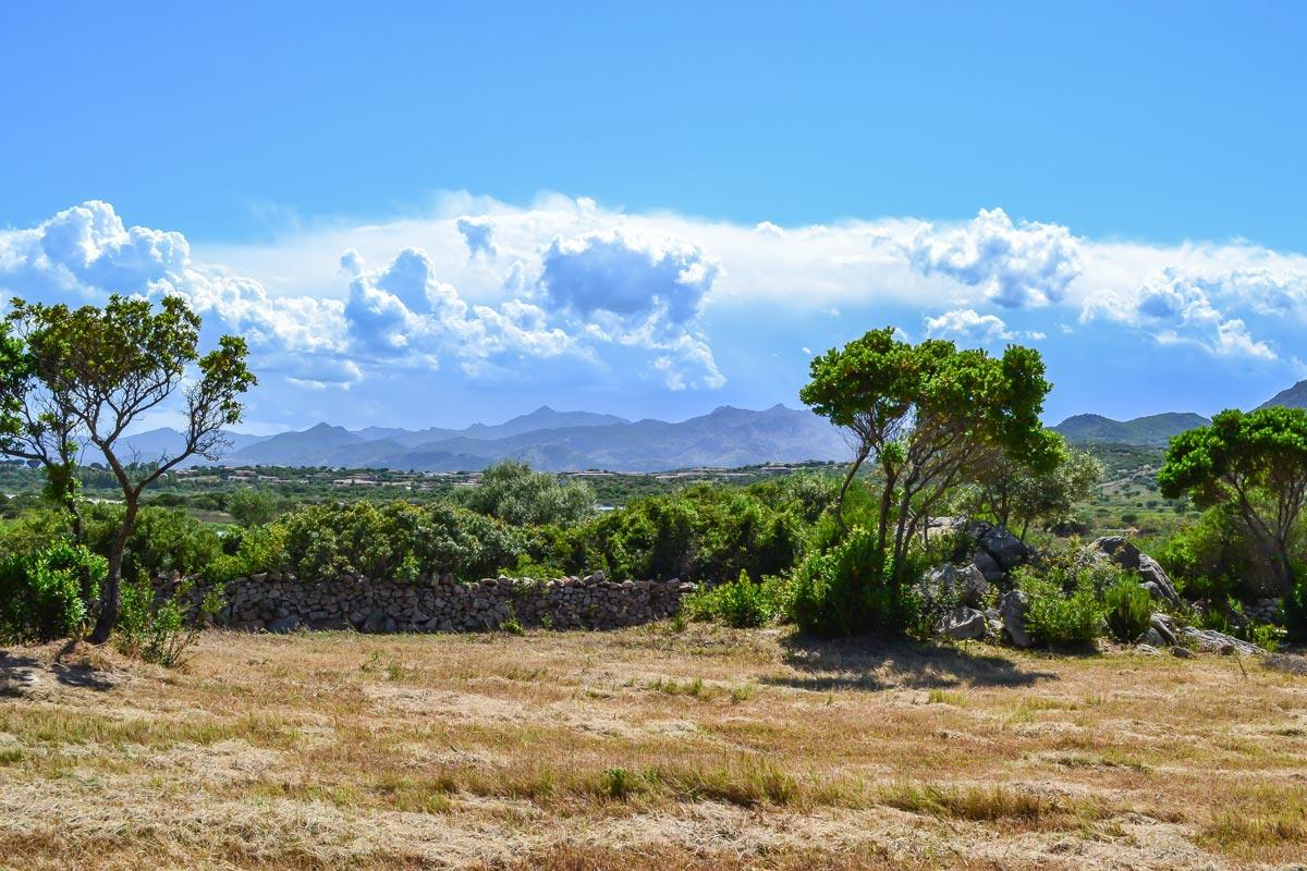 San-Teodoro-Natur