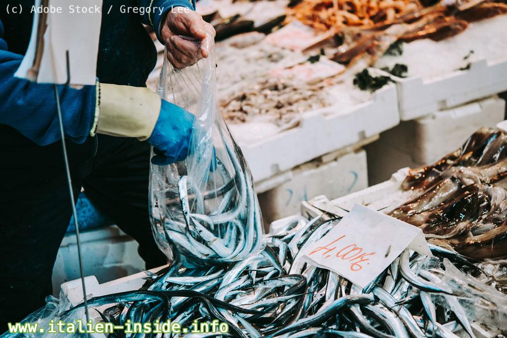 Fische-auf-Markstand