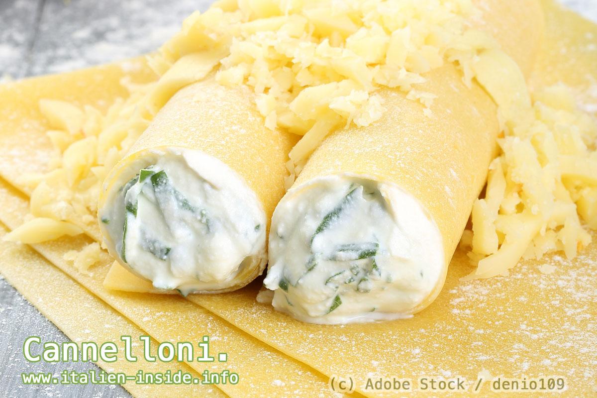 Spezialitaeten-Emilia-Romagna-Cannelloni
