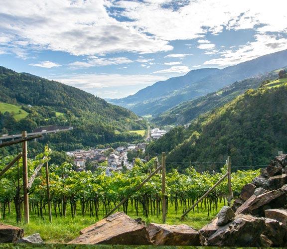 Trentino-Suedtirol