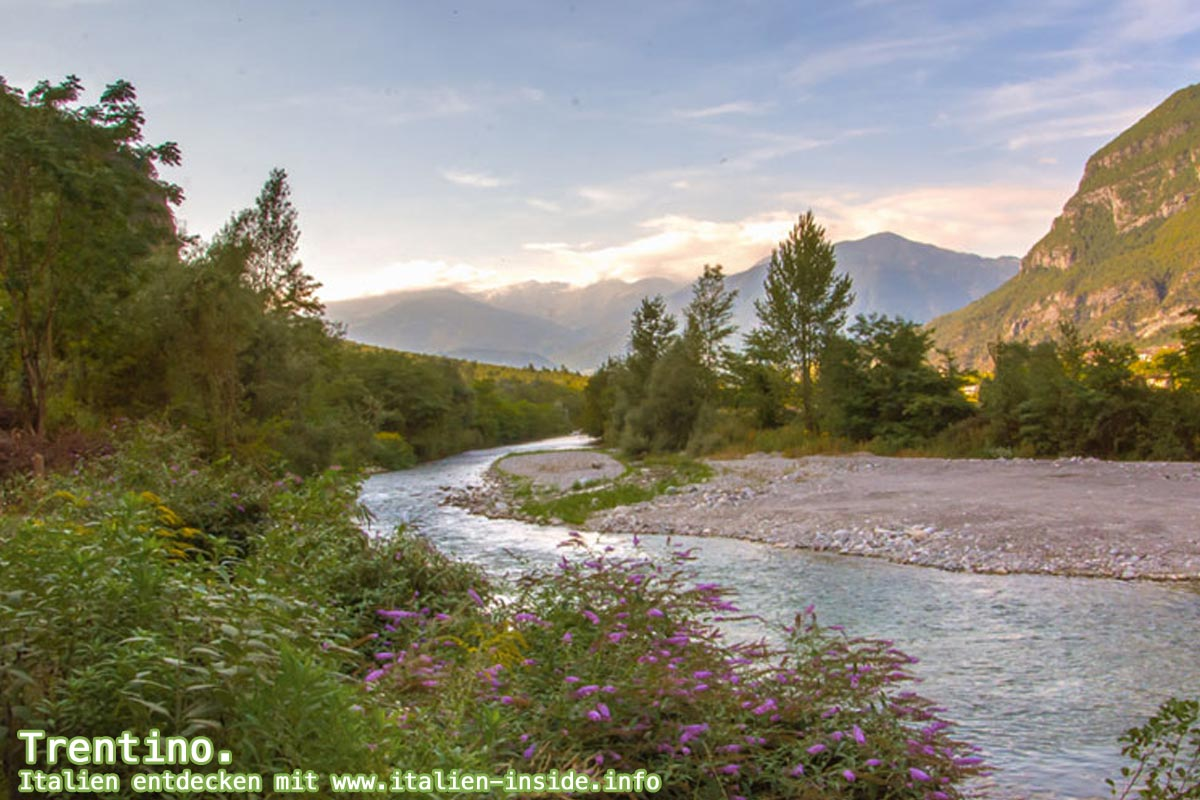 Trentino-Suedtirol-Flusslandschaft-Brenta