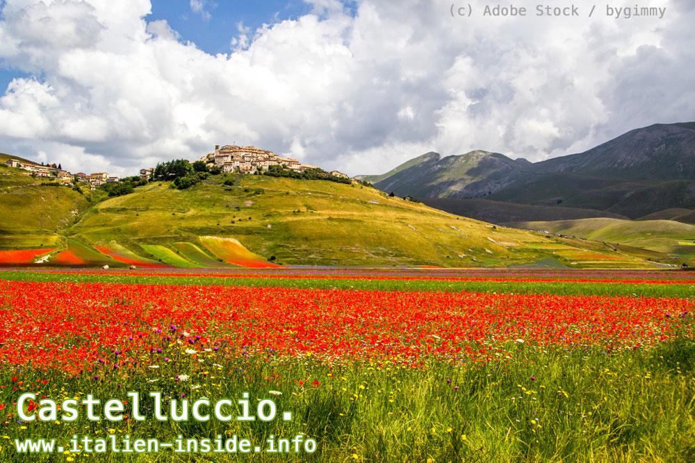 Umbrien-Hochebene-Castelluccio