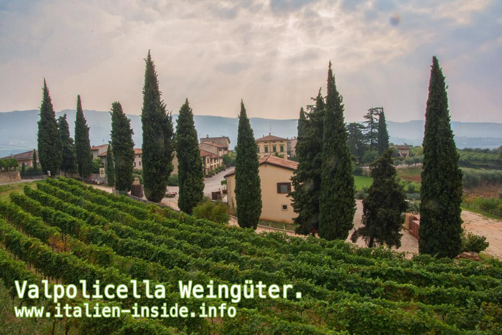 Valpolicella-Weingut-Villa-Spinosa